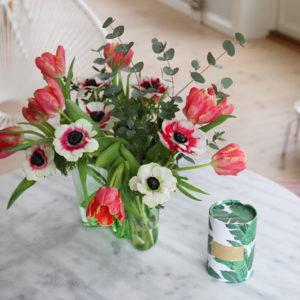 160211-blom2_56bccc1ae087c36607dd0240